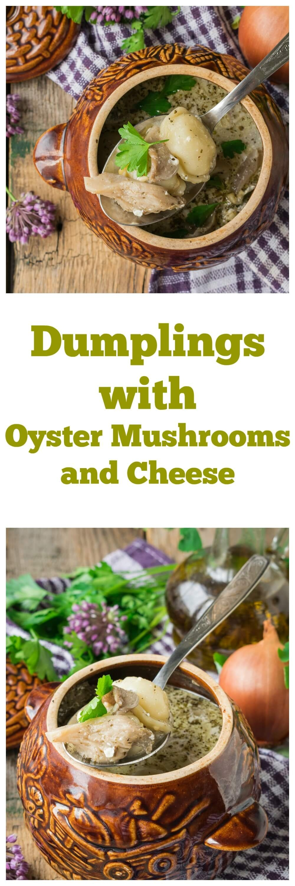 Dumplings with Oyster Mushrooms and Cheese